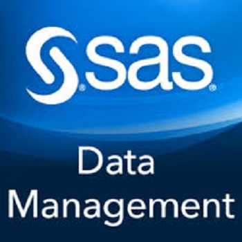 SAS-the-software-firm.jpg