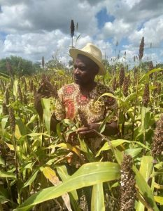 Group Editor-In-Chief for CAJ News Africa, Savious-Parker Kwinika visiting one field which promises bumper harvest this season. Photo by CAJ News
