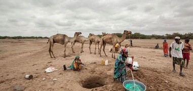 Financial crunch worsens Somalia drought woes